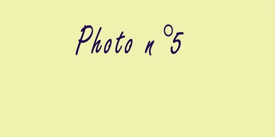 Photo-5
